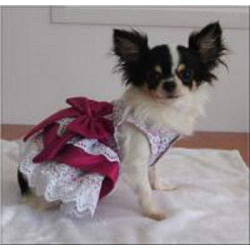 Tiffany roze jurk met kant